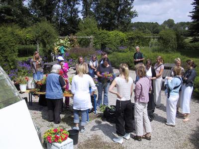 Blomsterbinding i Kulturbotanisk have